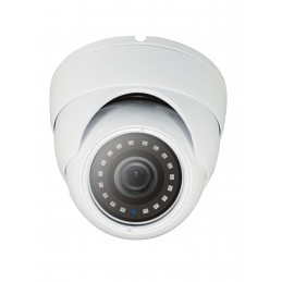 DOME CAMERA WITH FIXED LENS...